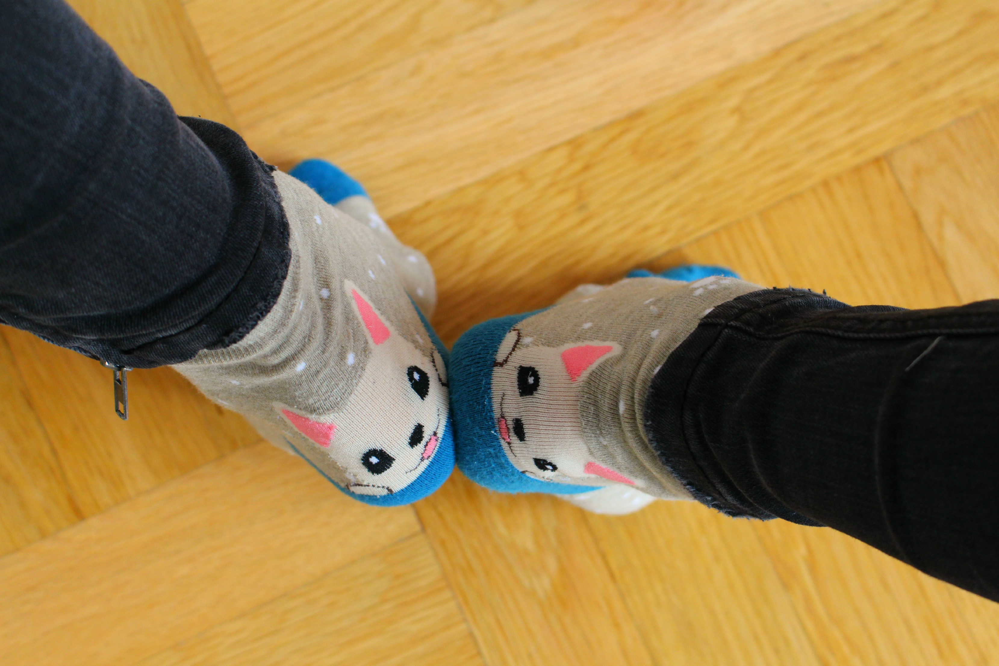 My new cute blue doggy socks :)